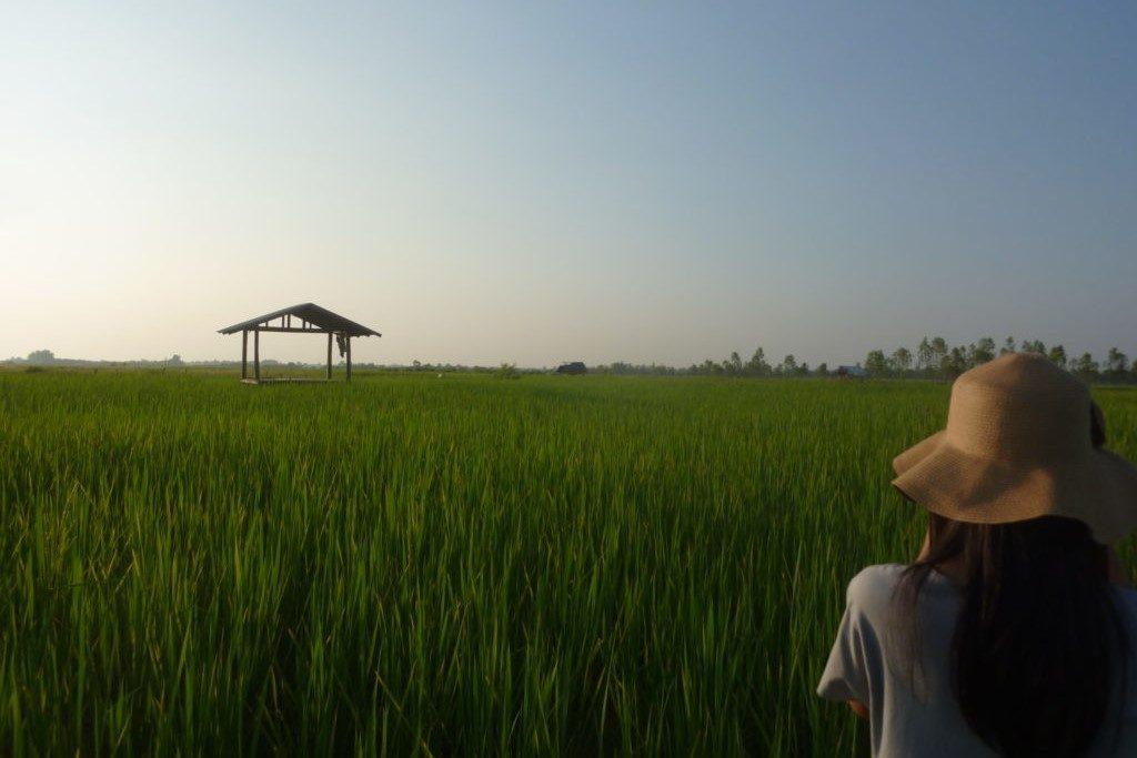 Croiser les regards – Sakon Nakhon, Thaïlande